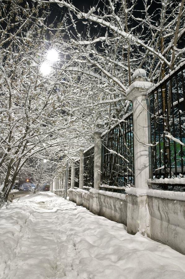 зима бульвара стоковые фотографии rf