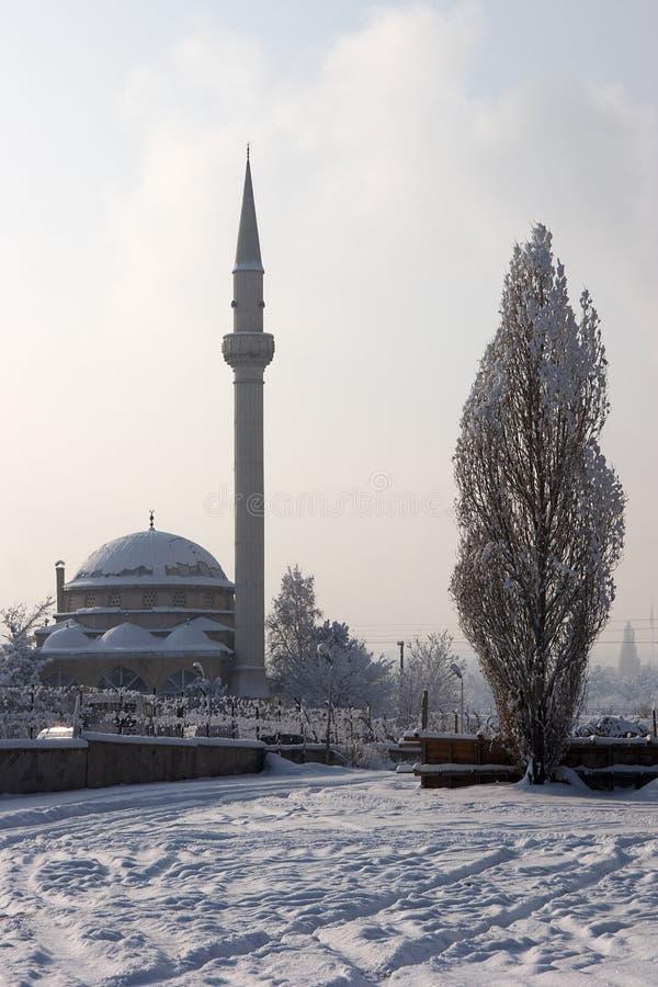зима вала тополя мечети стоковая фотография rf