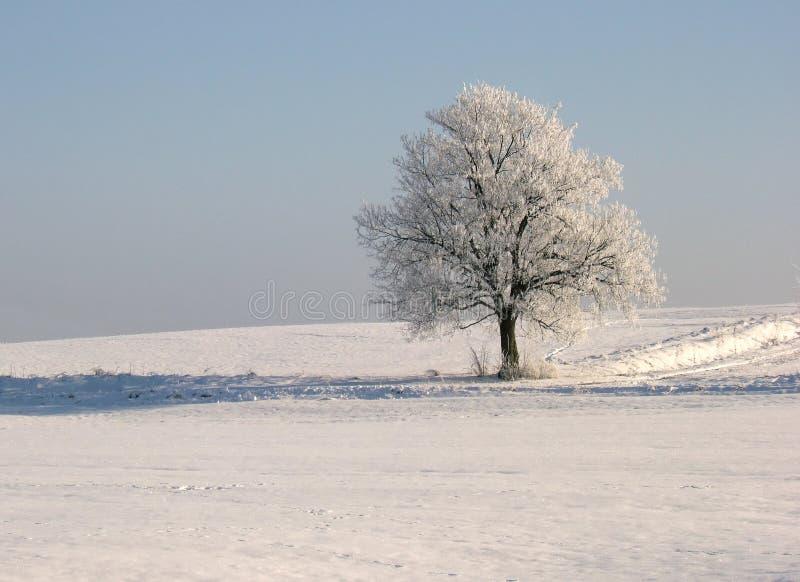 Download зима вала стоковое фото. изображение насчитывающей бело - 493340