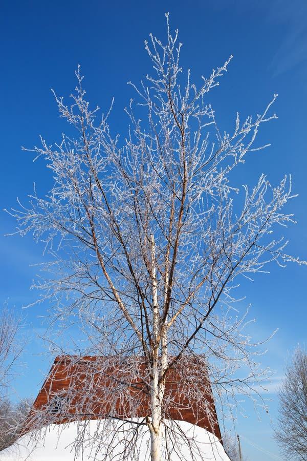 зима вала housetop стоковые фото