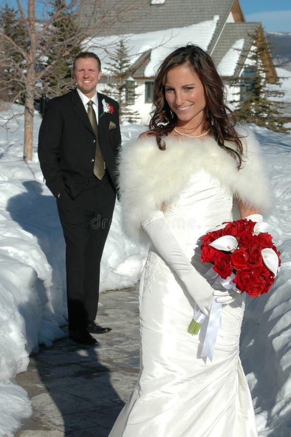 зима венчания стоковые изображения
