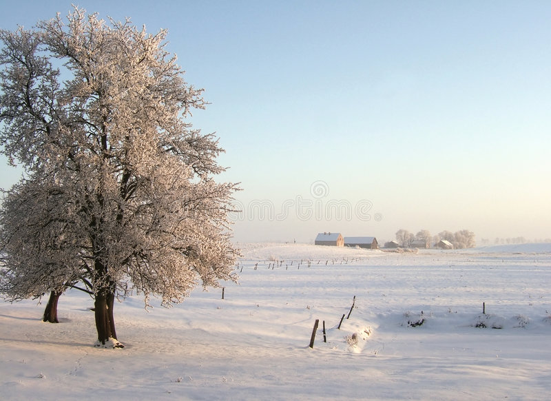 зима вечера стоковая фотография
