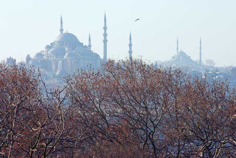 зима взгляда suleymaniye мечети istanbul стоковое фото rf