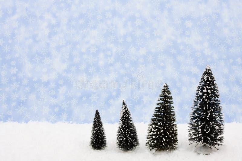 зима времени стоковое изображение rf