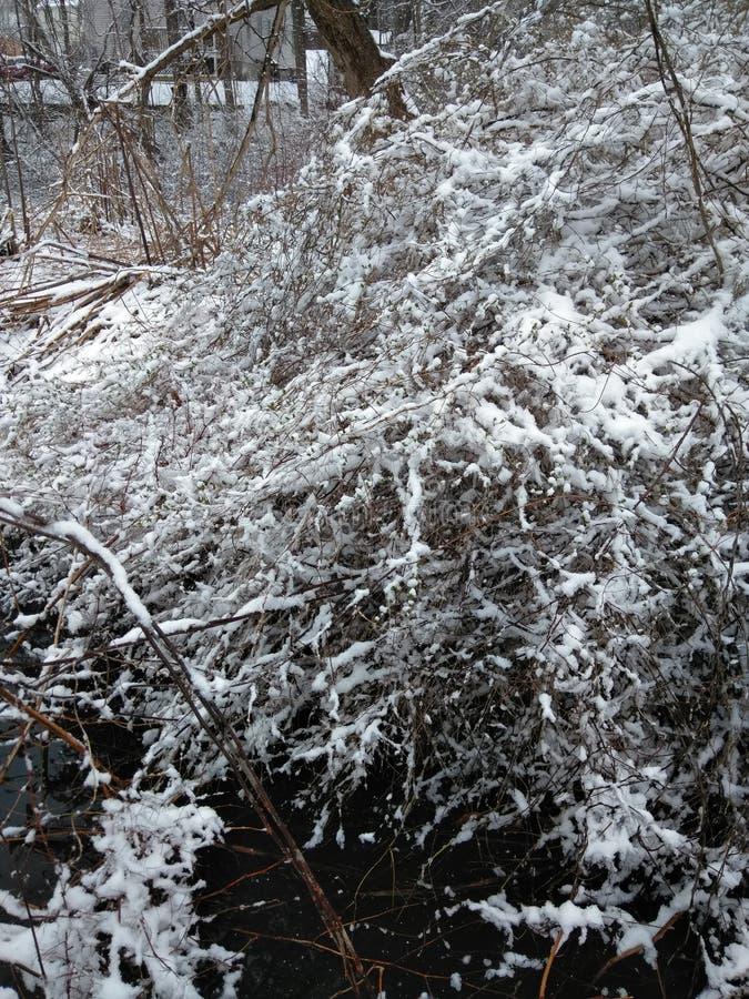 зима в апреле стоковые фото