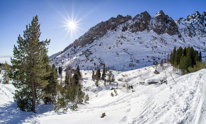 Зима в горах высокие tatras Словакии стоковая фотография