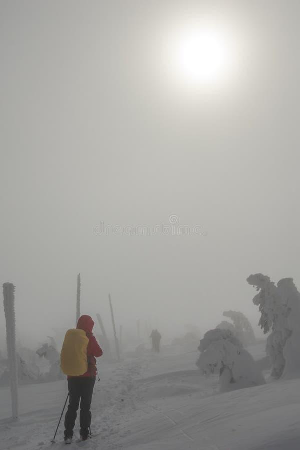 Зима в горе стоковая фотография