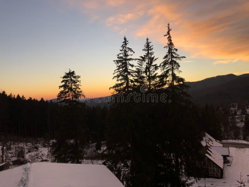 Зима в горе стоковое изображение rf