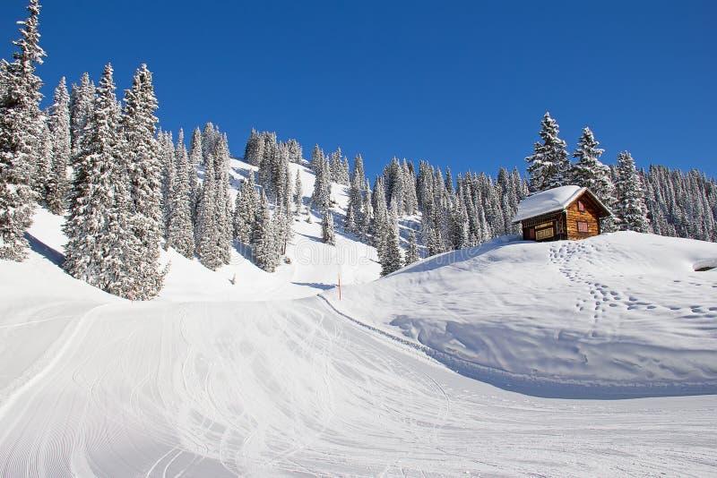 Зима в горных вершинах стоковые изображения