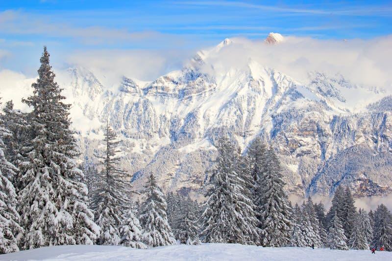 Зима в горных вершинах стоковое изображение