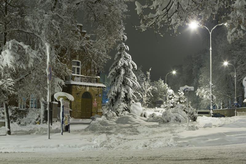 Зима в городе, покрытых снег деревьях и знаках, белых улицах и тротуарах стоковое фото rf