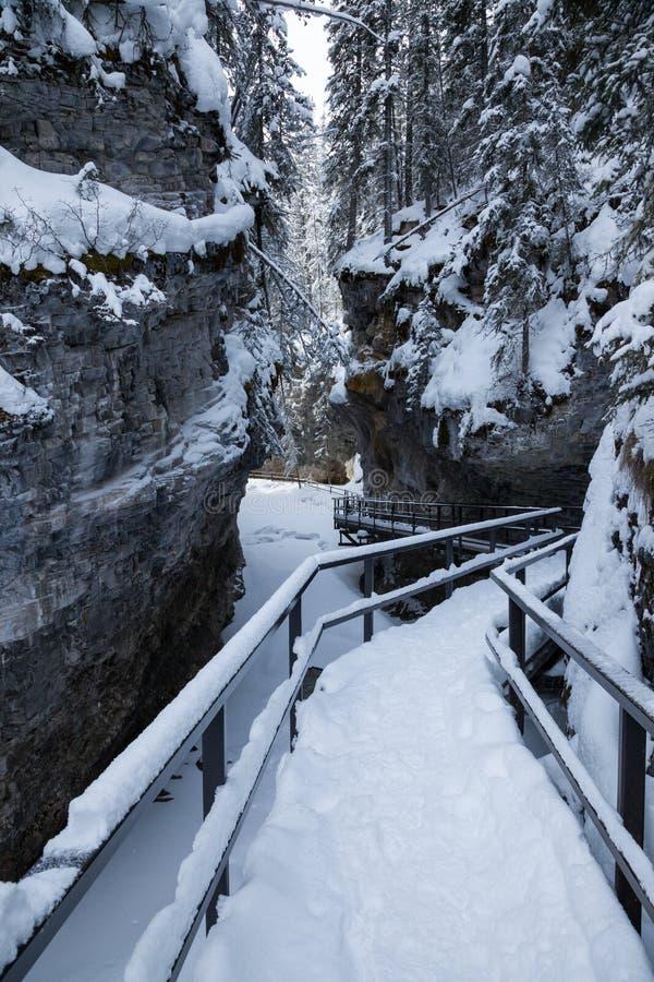 Зима в каньоне Johnston в национальном парке Banff, Альберте стоковые фотографии rf