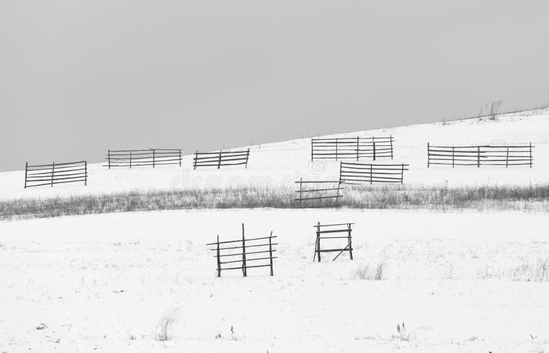 Зима в лесе с покрытыми деревьями снега, абстрактном сезоне xmas ландшафта стоковое изображение rf