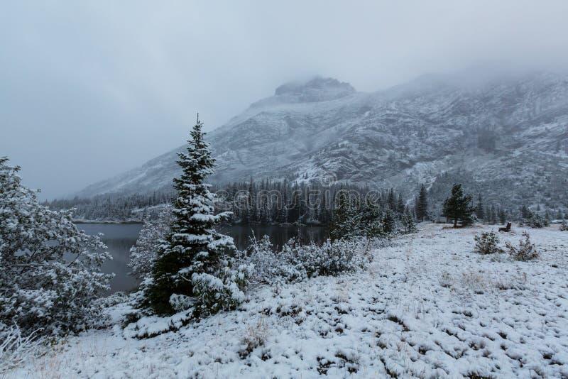 Зима в парке ледника стоковые изображения rf