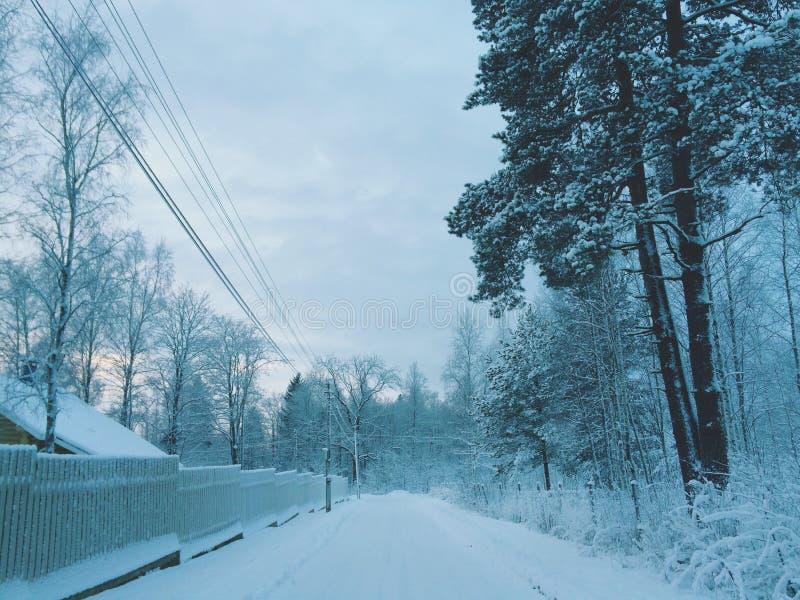 Зима в сельской местности стоковые фотографии rf