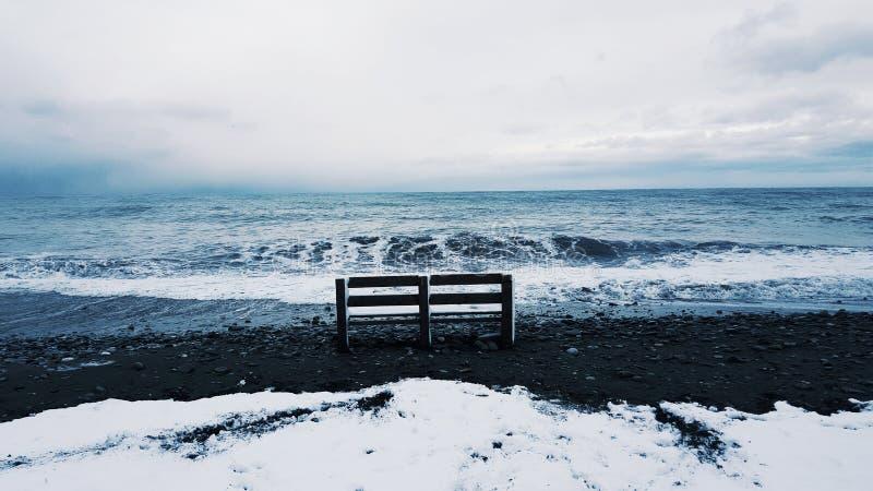 Зима в Сочи стоковая фотография rf