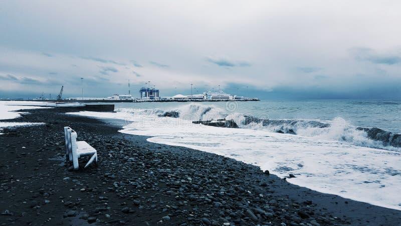 Зима в Сочи стоковая фотография