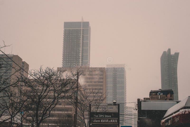 Зима в центре города toronto стоковые фото