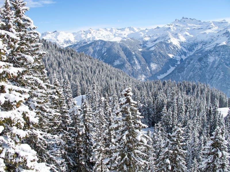 Зима в alps стоковые изображения rf