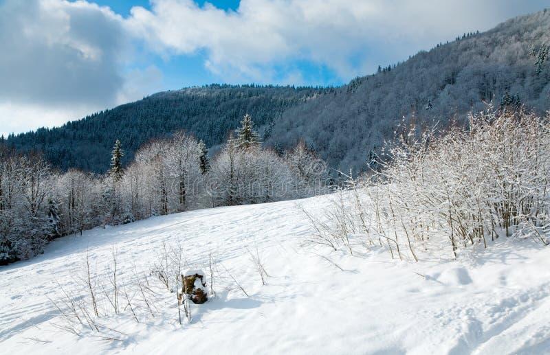 зима горы ландшафта стоковое фото