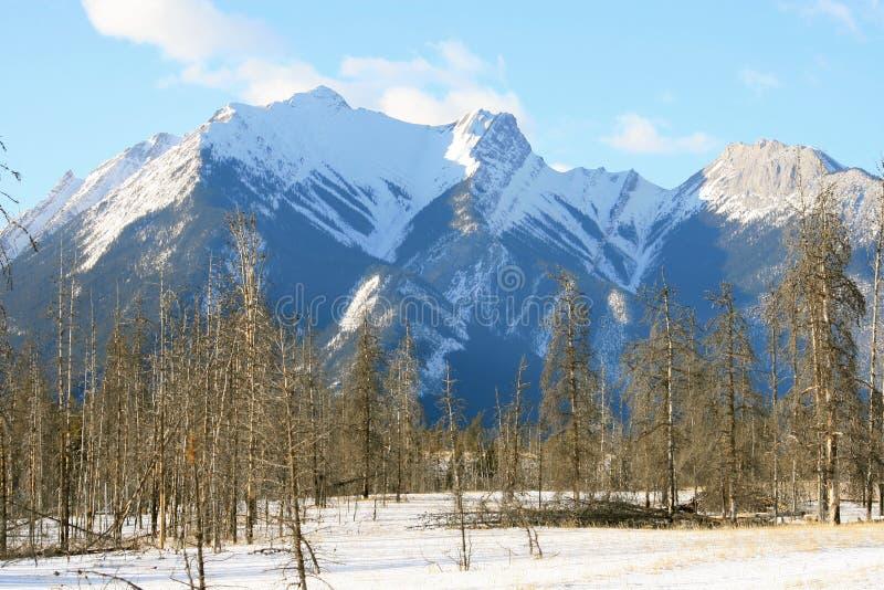 зима гор предпосылки стоковые изображения