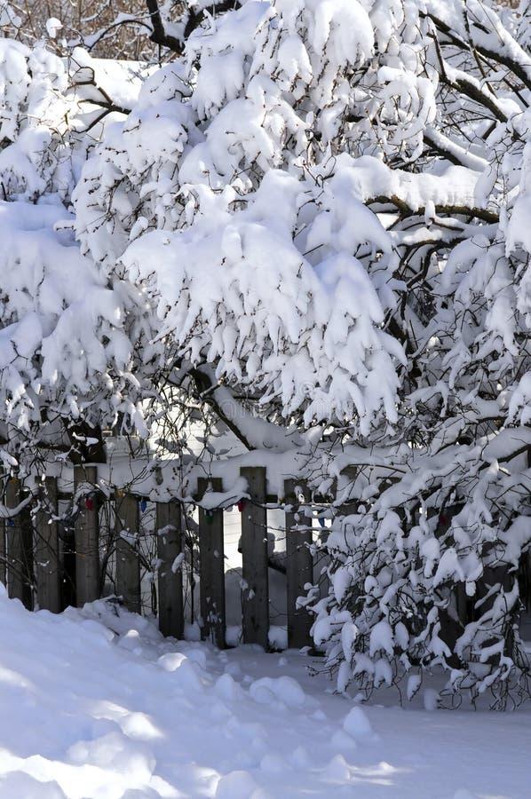 зима дома загородки стоковая фотография rf
