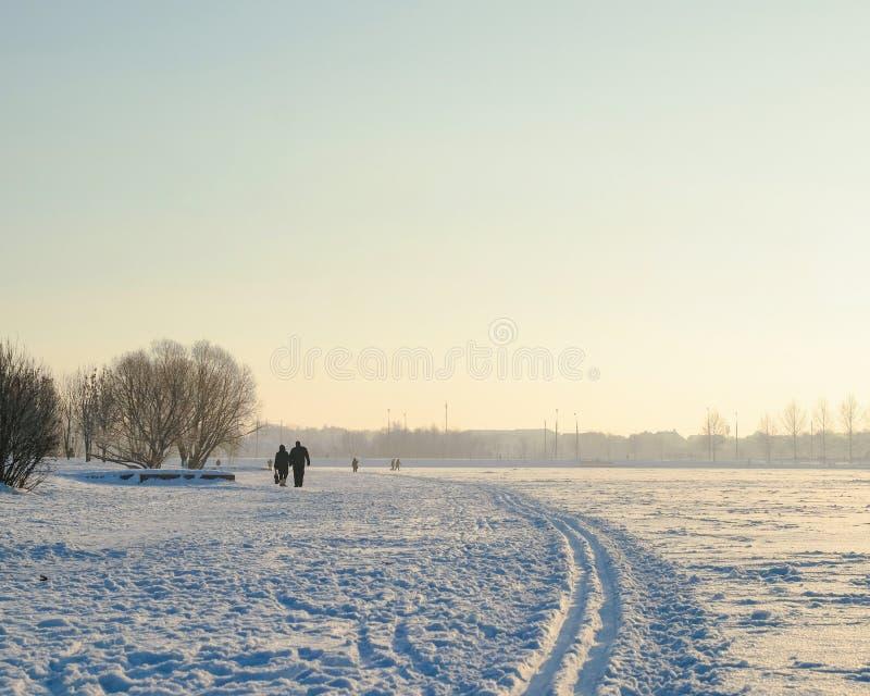 Зима и пары Butovo Москвы идя в парк стоковые фотографии rf