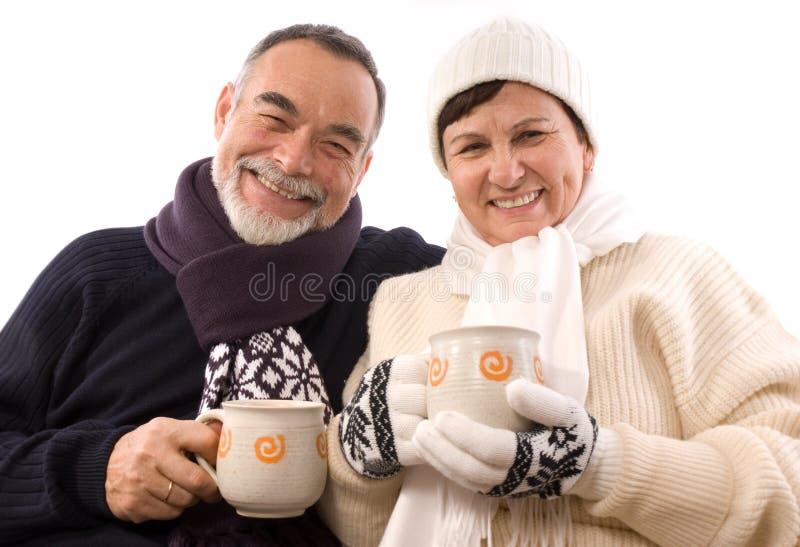 Download зима курорта стоковое изображение. изображение насчитывающей мужчина - 6865075