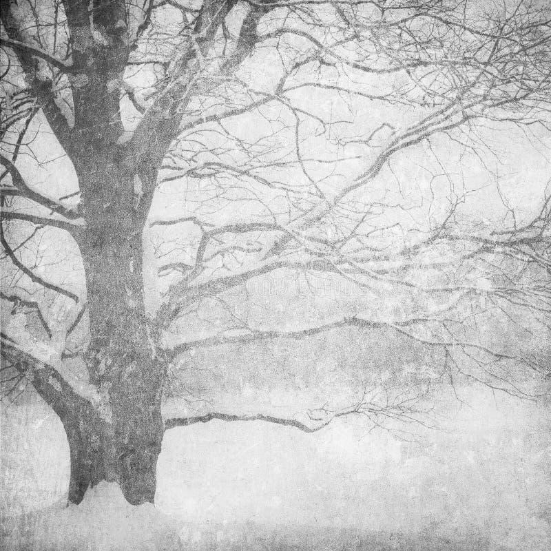 зима ландшафта изображения grunge стоковые фотографии rf