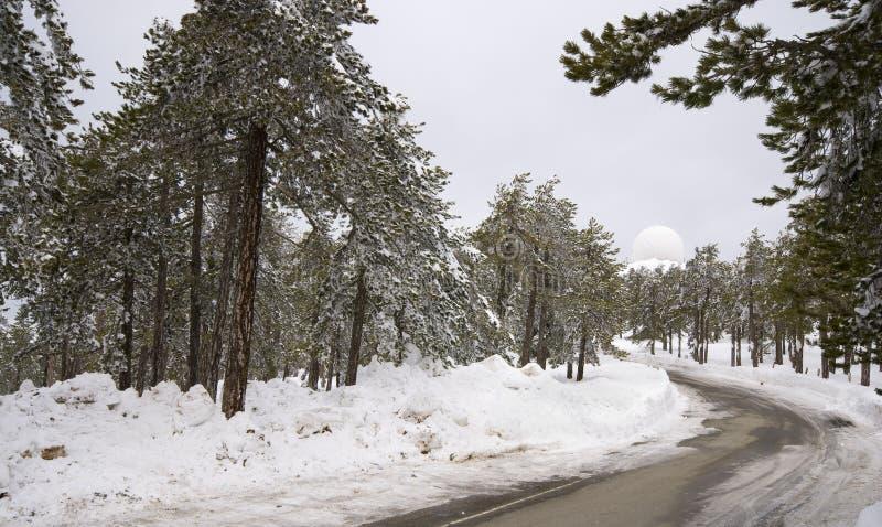 зима ландшафта Кипра стоковая фотография
