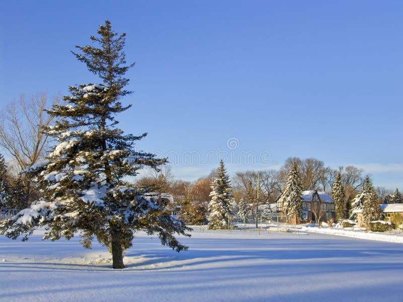 Download зима ландшафта стоковое фото. изображение насчитывающей outdoors - 6854500