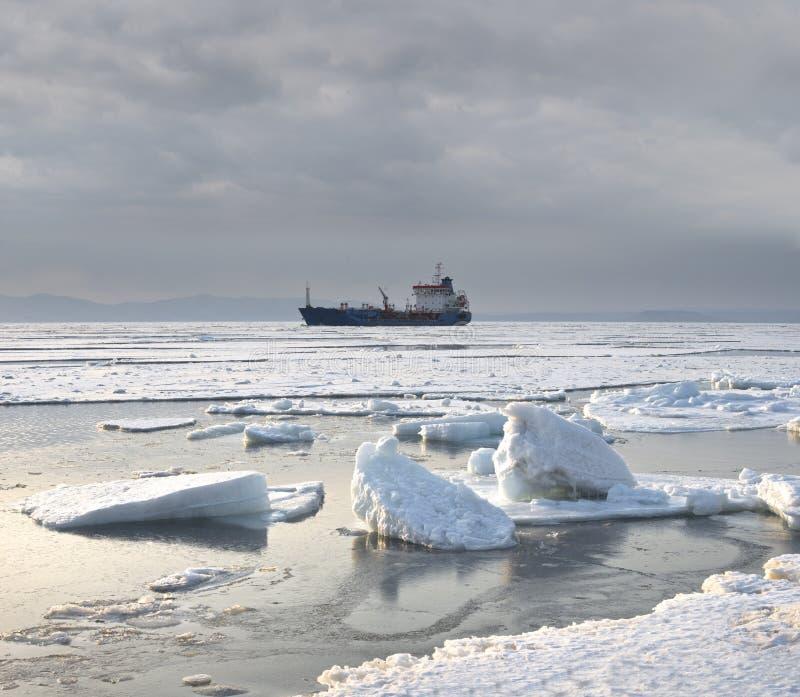 Зима, море, покрытый снег лед стоковое изображение rf