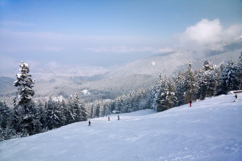 зима наклона лыжи панорамы гор стоковая фотография rf