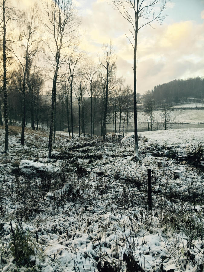 Зима Норвегия стоковые фото