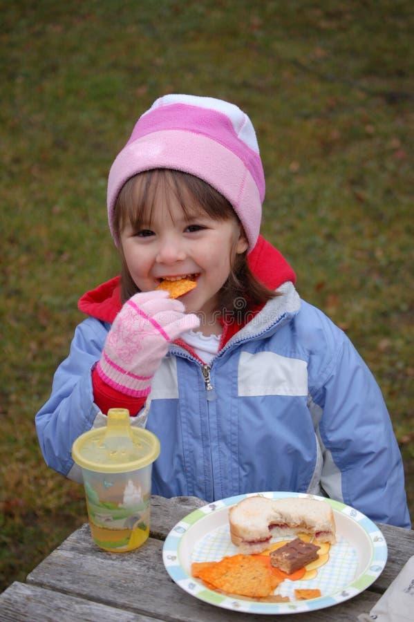 зима пикника стоковая фотография rf