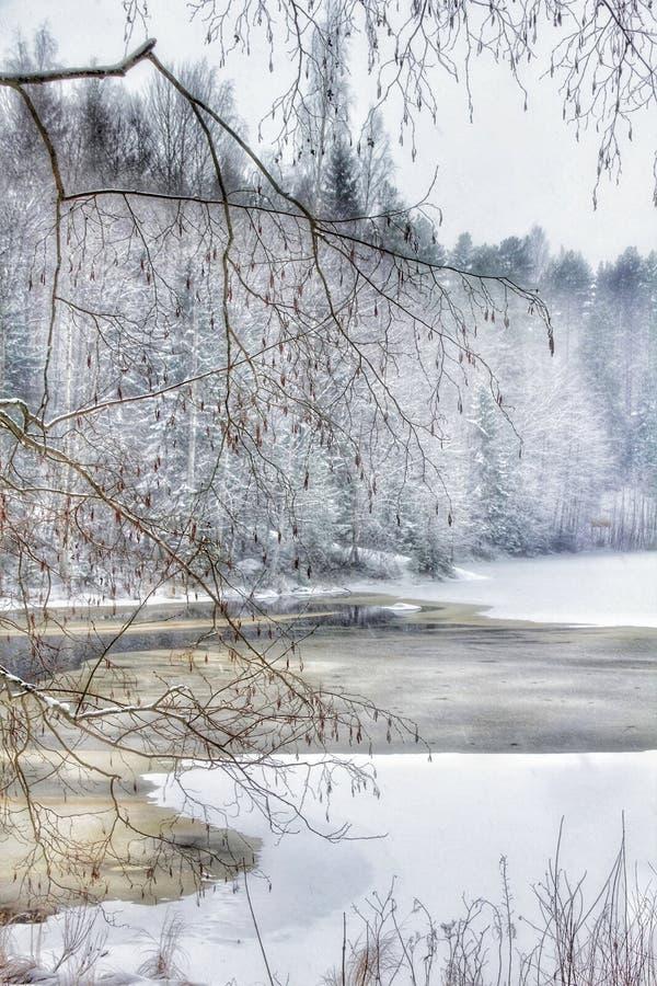 Зима реки деревьев Outdoors идет снег небо леса Outdoors стоковое изображение