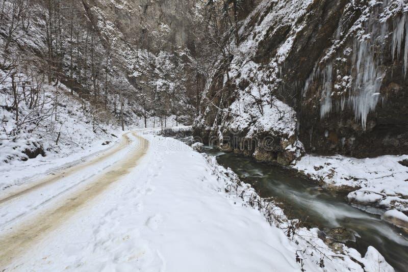 зима реки ландшафта стоковые изображения rf
