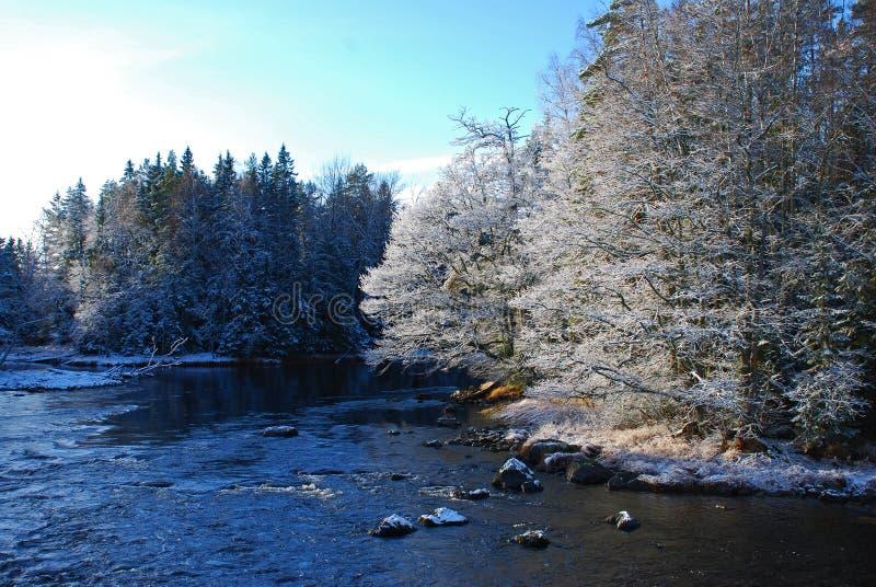 зима реки ландшафта стоковое изображение