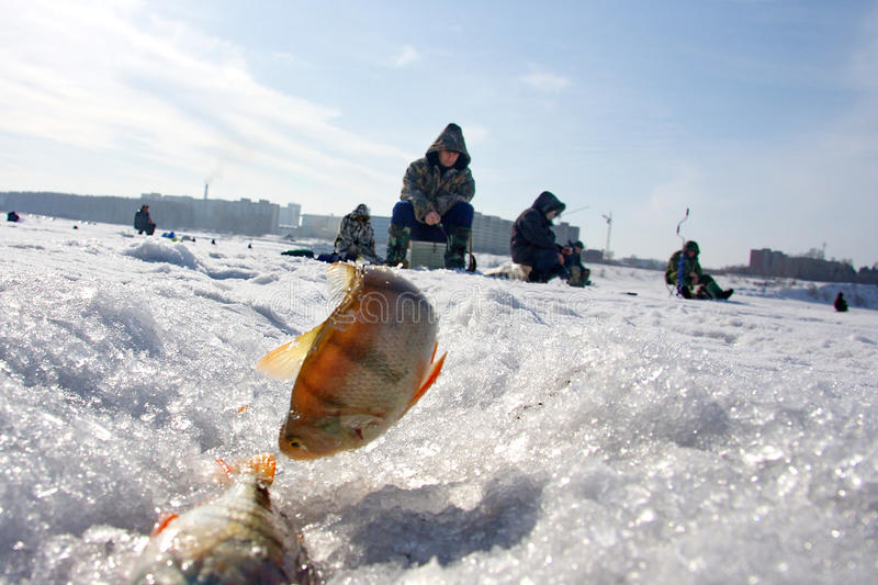 зима рыболовства стоковое изображение rf