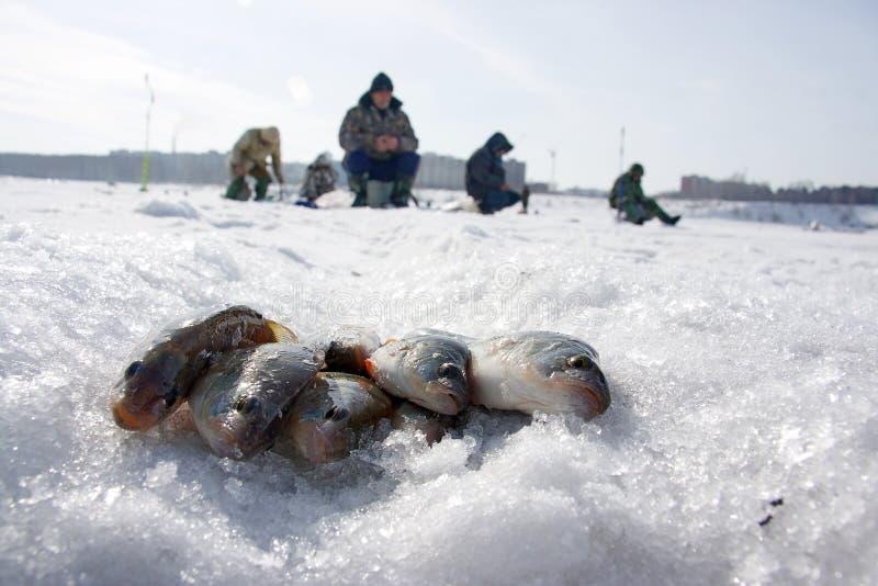 зима рыболовства стоковые фотографии rf