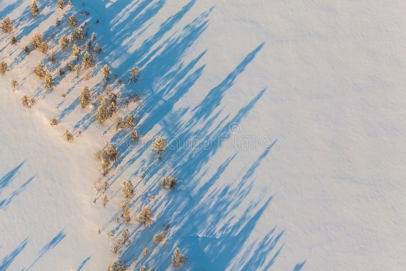 зима Сибиря стоковое изображение