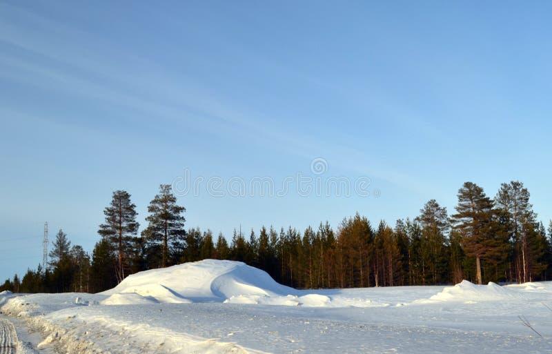зима Сибиря стоковое изображение rf