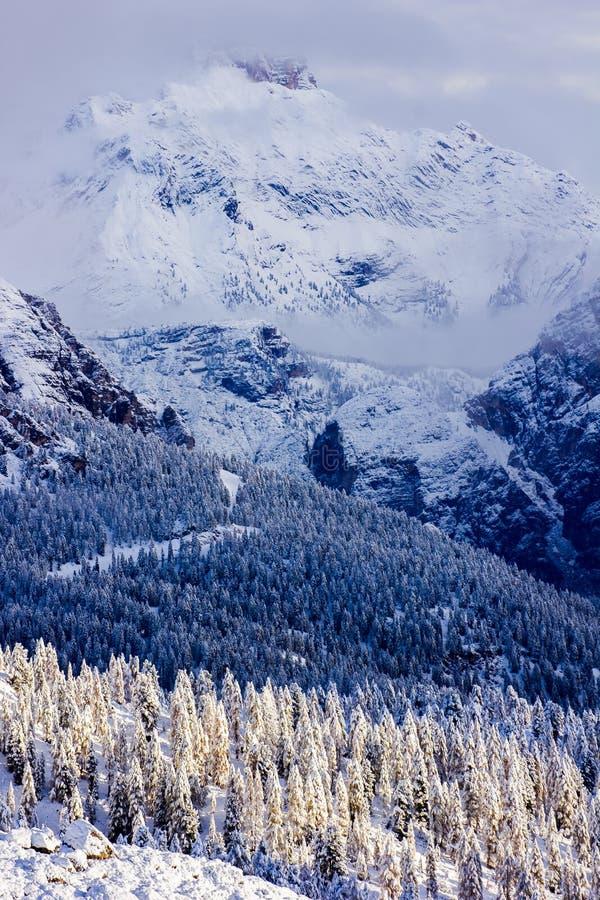Зима сказки в горах со снежным красивым лесом делает стоковые изображения