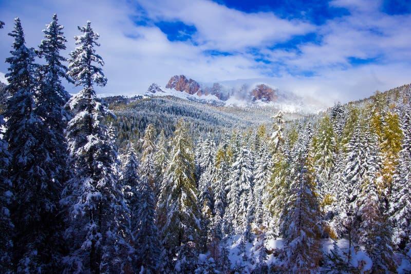Зима сказки в горах со снежным красивым лесом делает стоковое фото