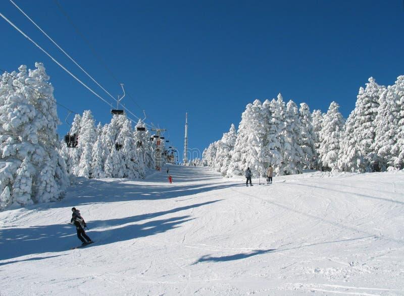 зима сказки стоковое фото rf