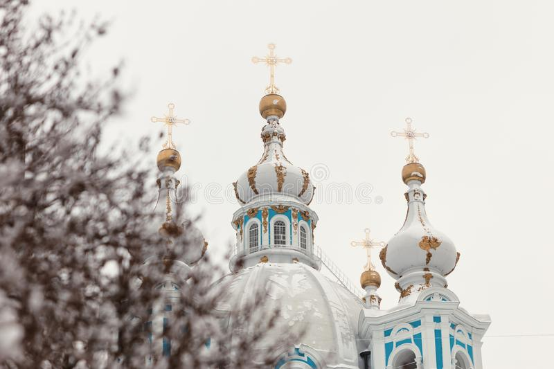 Зима собора Smolny стоковое фото rf