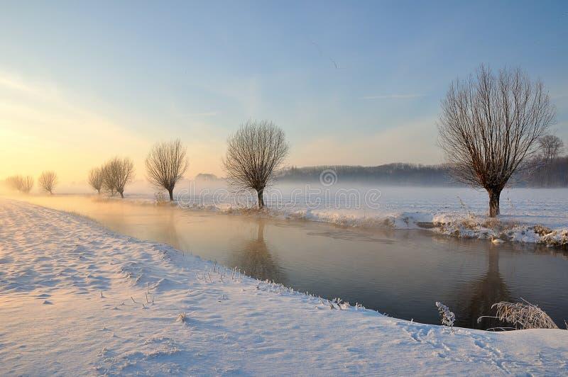 зима солнца снежка голландского ландшафта низкая стоковое фото