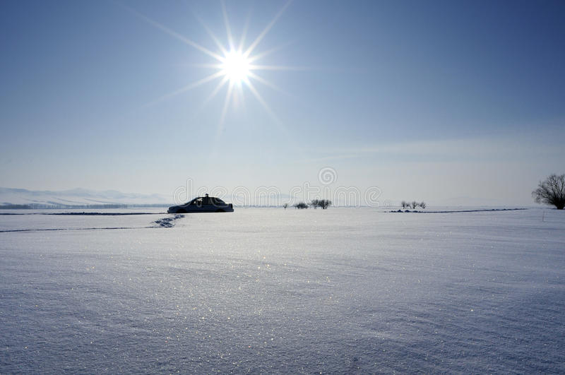 зима солнца стоковая фотография rf
