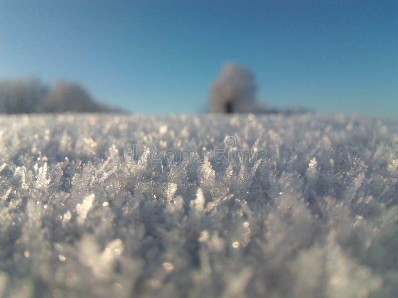 зима состава светлого тонового изображения способа красотки искусства совершенная стоковая фотография
