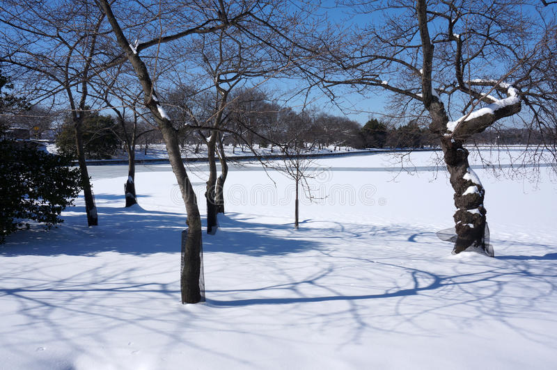 Зима сценарная на приливном тазе стоковое фото rf